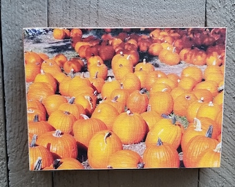 Pumpkin Patch Original Photograph Printed on Canvas and Mounted. Free standing or hanging!
