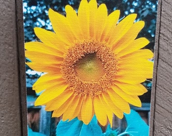 Sunflower Original Photograph of Printed on Canvas and Mounted. Free standing or hanging!