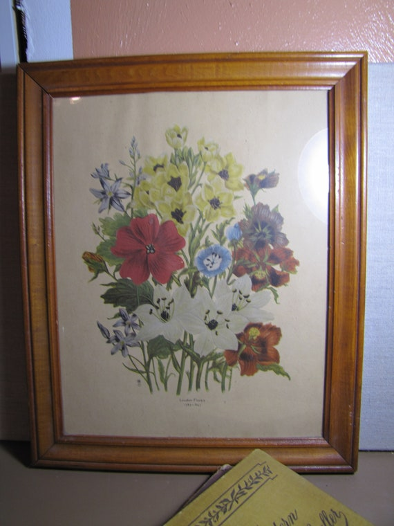 Hbs Pictures Loudon Florals 1783 1843 Framed Floral Etsy
