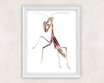 Praying Mantis Art Print - Watercolor Insect - Home Decor - Wall Art 8x10 PRINT - Item #702A