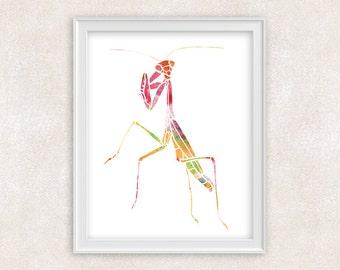 Mantis Insect Watercolor Print - Wall Art - Home Decor 8x10 PRINT - Item #702B