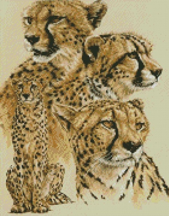 Cross Stitch Chart Kit Cheetah Celerity
