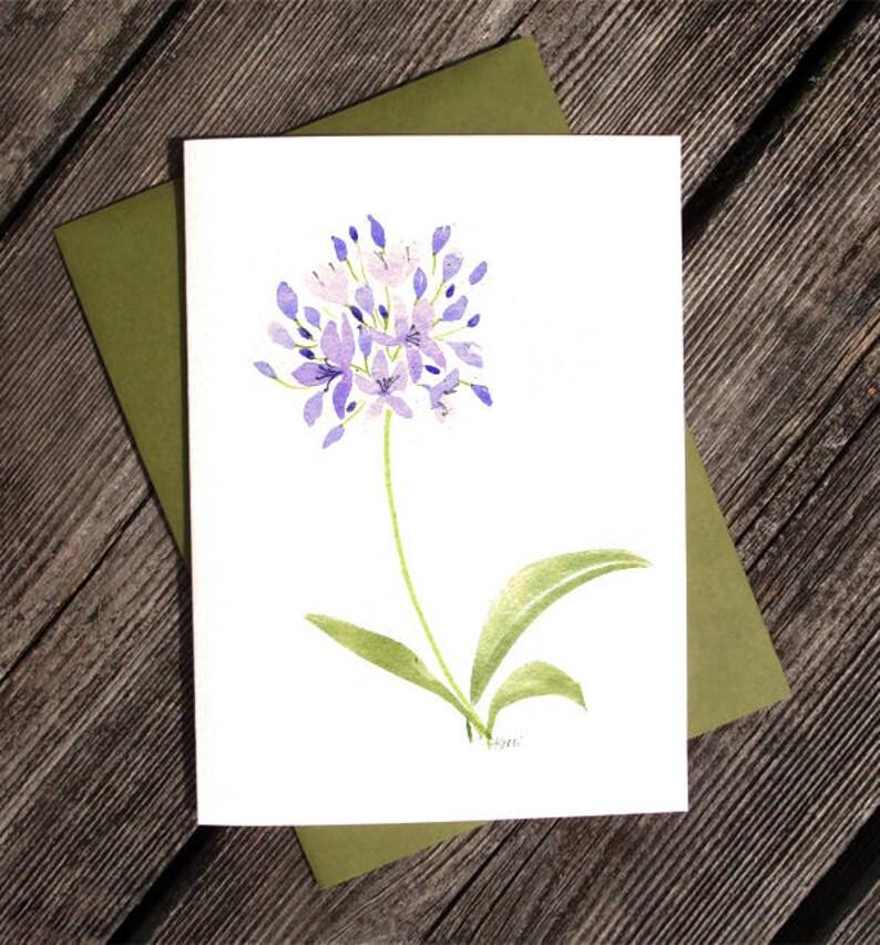 Agapanthe Violet Aquarelle Carte De Voeux Imprime Lily Of