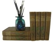 Brown Classic Literature for Shelf Decor, Decorative Book Set for Farmhouse Decor, Young Folks Treasury