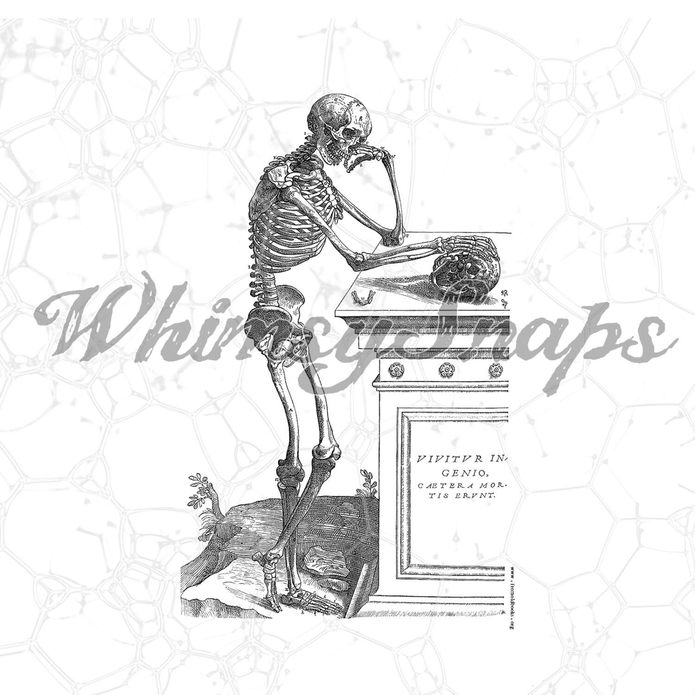 Detallada Vintage esqueleto por sepulcro imagen DIGITAL | Etsy