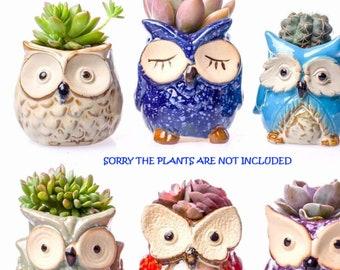 OWL PLANTER POT - Owl Planter Set - Set Of 6 Plant Pots - Cute Owl Planter - Succulent Plant Gift - Plant Holder Planter