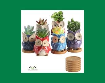 OWL SUCCULENT POTS - Ceramic Owl Planter - Animal Plant Pot - Cute Owl Gifts - Owl Plant Holder - Handmade Plant Pot