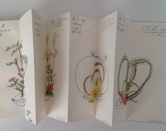 Vintage accordion fold sketch book with 22 pages of botanical sketches in 40 page book with oriental writing and notes in English