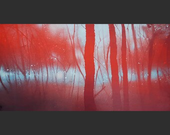Bright red Light blue (122x61cm = 7442m2 forest)