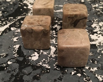 Petoskey Stone Whiskey Stones! Pre-Order
