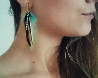 Feather earrings turquoise with grizzly accent