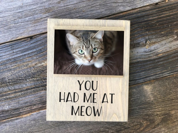 Pet Frame Cat Picture Frame Cat Lover Gift You Had Me At Etsy