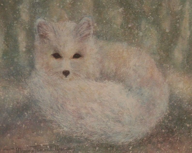 Fine Art Note Card Snow Fox Greeting Card Arctic image 0