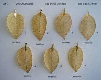 Natural Leaf, Leaf Pendant, Electroplated 24K GOLD, Plated Natural Real Leaf. Sale by One & Random 5, 10, 20, 25 leaves