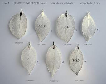 Natural Leaf, Leaf Pendant, Electroplated  925 Sterling silver, Plated Natural Real Leaf.  Sale by One
