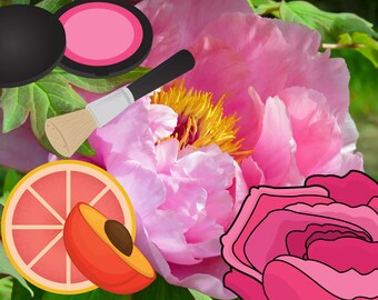 Hajidere geek chic indie perfume oil fragrance for women peach grapefruit peony rose dragon's blood thyme clove anime manga kawaii waifu