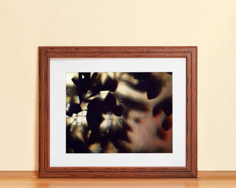 LEAVES BEHIND GLASS // Photography Fine Art Print Light image 0
