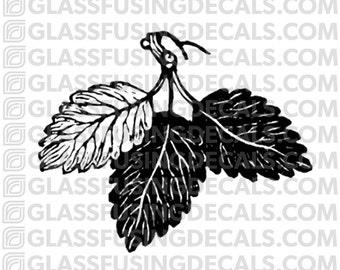 Leaf Trio Glass Fusing Decal for Glass or Ceramics