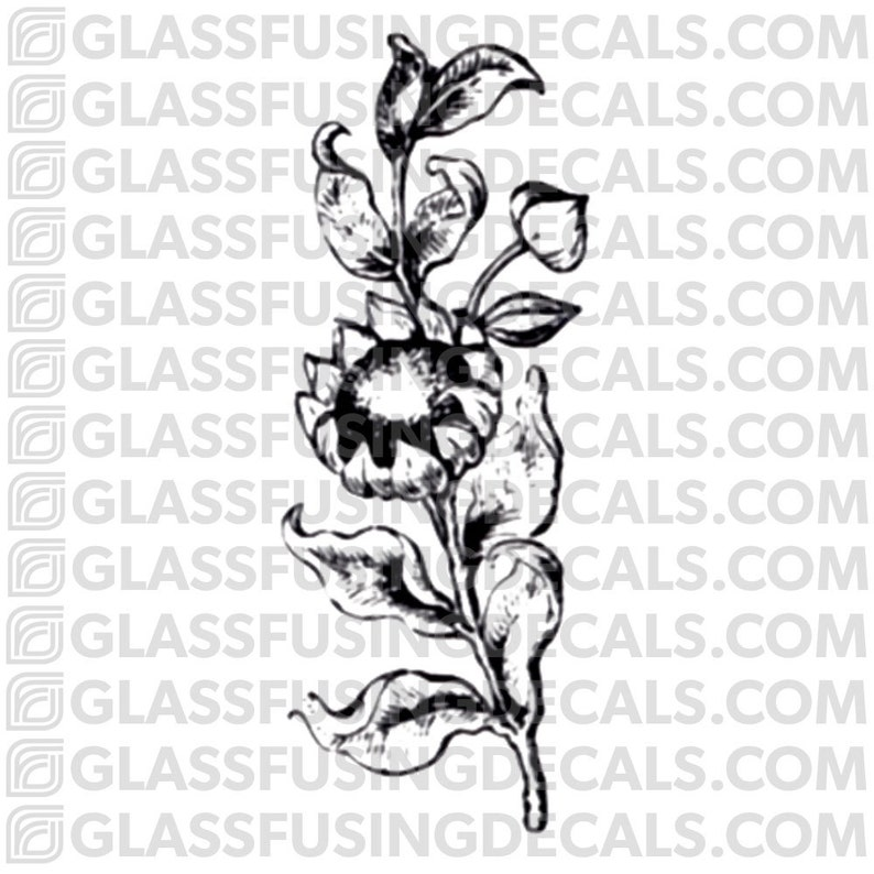 Sunflower Glass Fusing Decal for Glass or Ceramics image 0
