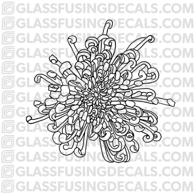 Chrysanthemum Bloom Glass Fusing Decal for Glass or Ceramics image 0