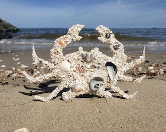 Crab, Wall Hanging, NJ Shells, Coastal Decor, Nautical, Beach, Decor, Housewarming, Gift, Shell Art, Beach Art, Wall Art, Shore Art, Art