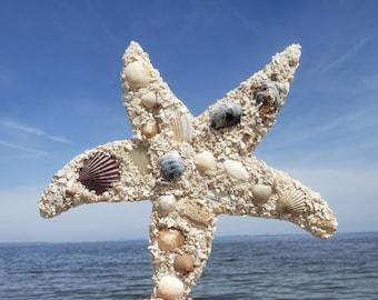 Starfish, Sand Art, Wall Hanging, Shell Art, Home Decor, Gift, Coastal, Shore Thing, Shore Sign, Coastal Christmas Decor, Beach Art, Beach