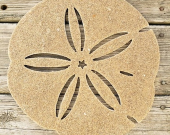 Sand Dollar Wall Hanging
