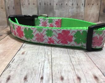 "The Kelly | Designer 1"" Width Dog Collar | CupcakePups Collars | Medium/Large Dog Collar"