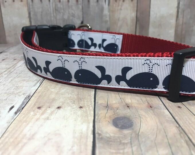 "The Beluga | Designer 1"" Width Dog Collar | CupcakePups Collars | Whales - Medium/Large Dog Collar"