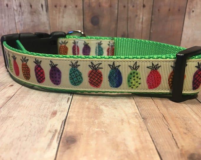 "The Island   Designer 1"" Width Dog Collar   CupcakePups Collars   Pineapples   Medium/Large Dog Collar"