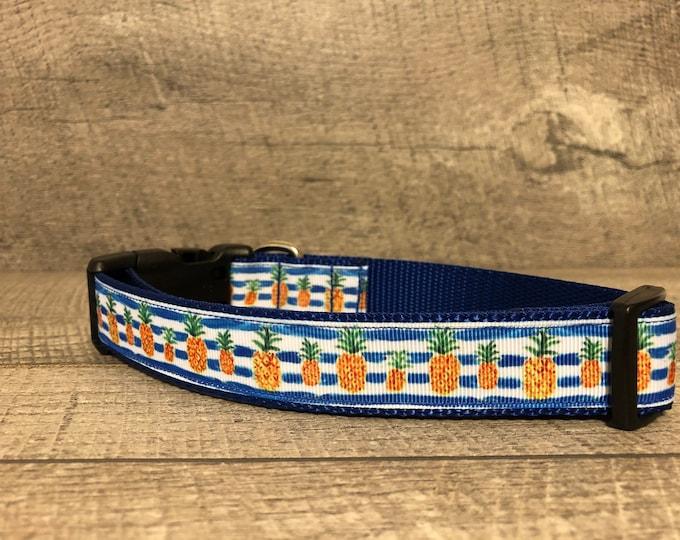 """The Aloha   Designer 1"""" Width Dog Collar   CupcakePups Dog Collars   Pineapples"""