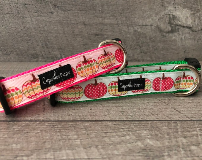 "Country Pink Pumpkins | Designer 1"" Width Dog Collar | CupcakePups Collars | Medium/Large Dog Collar | Fall/Thanksgiving"