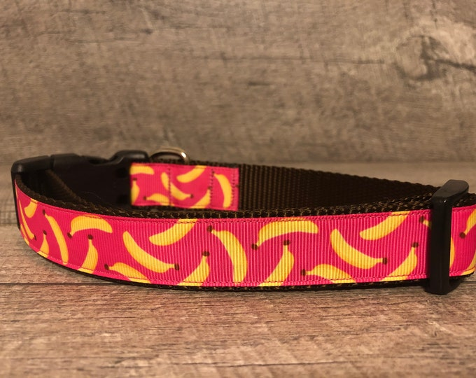 "Brand New | Designer 1"" Width Dog Collar 