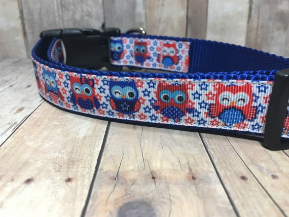 "The Sammy | Designer 1"" Width Dog Collar 