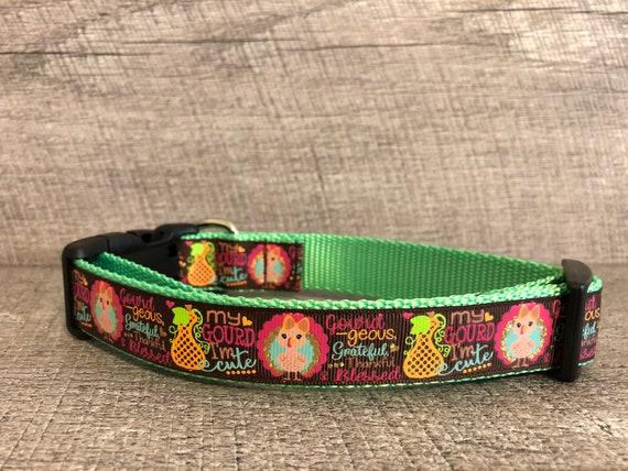 "Oh my Gourd | Designer 1"" Width Dog Collar | CupcakePups Dog Collars | New Fall Collar"