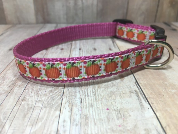 "The Harvest III | Designer 1/2"" Width Dog Collar 