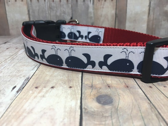"The Beluga | Designer 1"" Width Dog Collar 