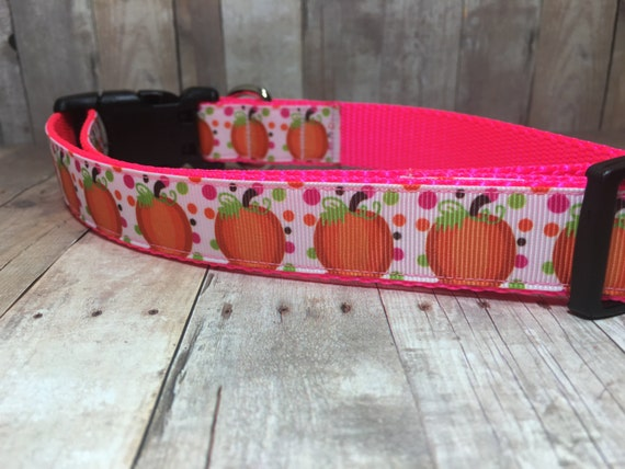 "The Harvest | Designer 1"" Width Dog Collar 