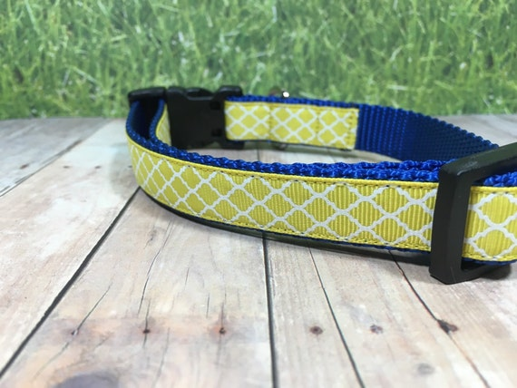 "The Duke | Designer 3/4"" Width Dog Collar 