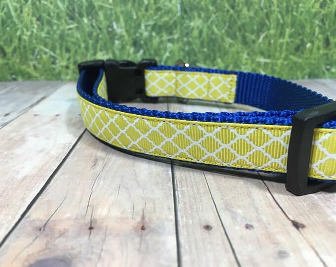 "The Duke   Designer 3/4"" Width Dog Collar   CupcakePups Collars   Yellow and Blue - Small/Medium Dog Collar"