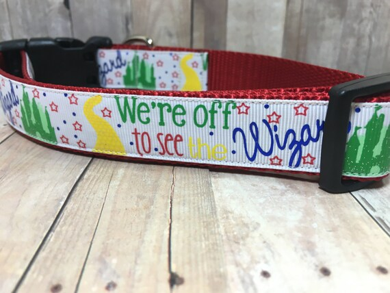 "The Wizard | Designer 1"" Width Dog Collar 
