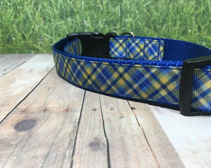 "The Canine Companion   Designer 1"" Width Dog Collar   Medium/Large Collar   CupcakePups Collars   Canine Companions Blue and Yellow"