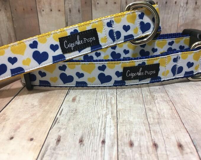 "The Chandra - Exclusive Blue & Yellow Hearts   Designer 1"" Width Dog Collar   CupcakePups Collars   Medium/Large Dog Collar"
