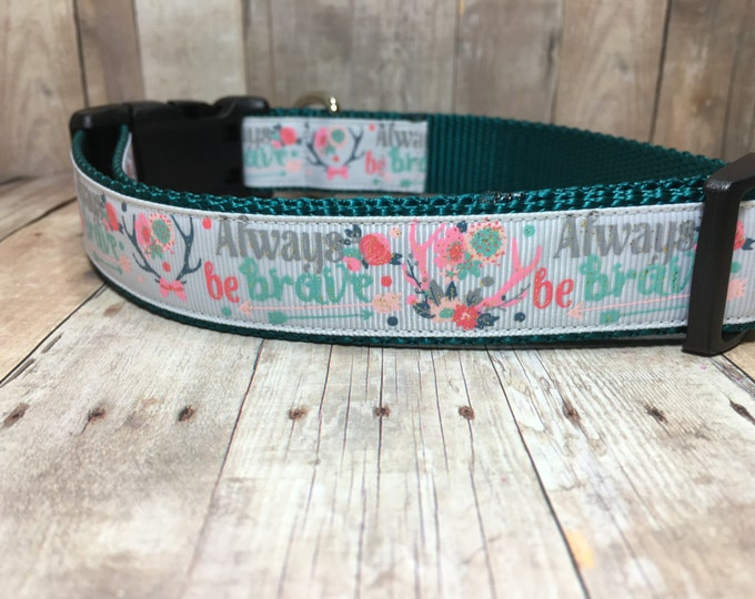 "The Melody | Designer 1"" Width Dog Collar | CupcakePups Collars | Always Be Brave | Medium/Large Dog Collar"