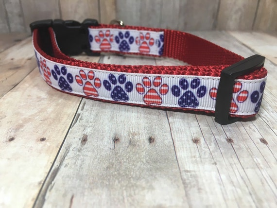 "The Patriot II | Designer 3/4"" Width Dog Collar 