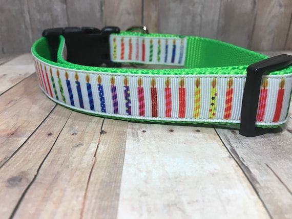"Blow Out the Candles - Designer 1"" Width Dog Collar -  CupcakePups Dog Collars - Birthday Dog Collar"