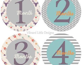 Deer & Arrow Baby Boy Monthly Stickers, Milestone Stickers, Month Stickers, Baby Month Stickers, Baby Stickers #56