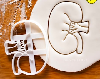 Anatomical Kidney cookie cutter | biscuit cutters | Gifts medical students human body organ parts renal organs anatomy