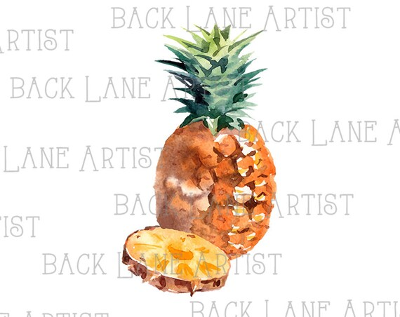Fruits Ananas Dessin Aquarelle Clipart Lineart Illustration Téléchargement Instantané Png Jpg Digi Ligne Art Image Dessin Lb71