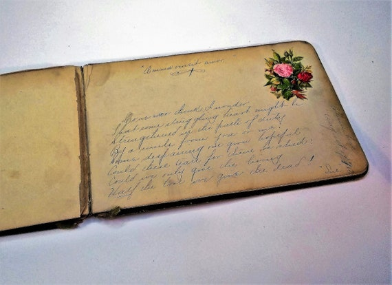 One of two antique, vintage, autograph books that appear to be from sisters, in Columbus, Ohio, in 1882.